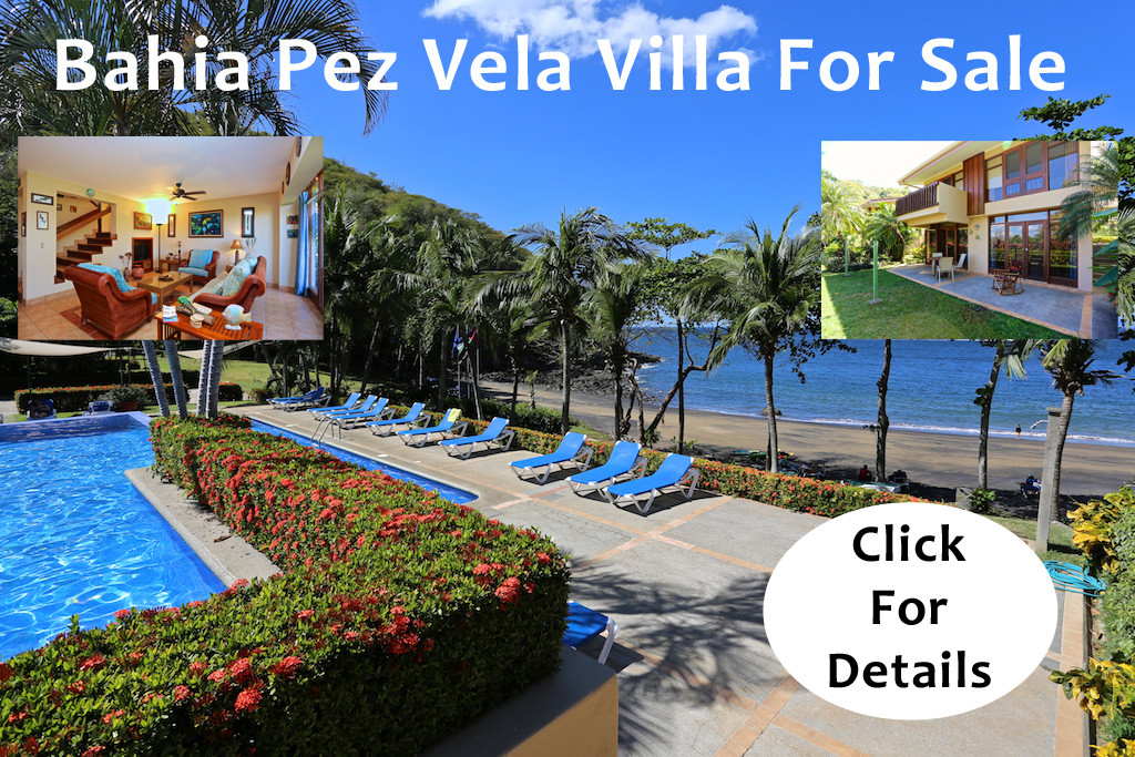Bahia Pez Vela 8