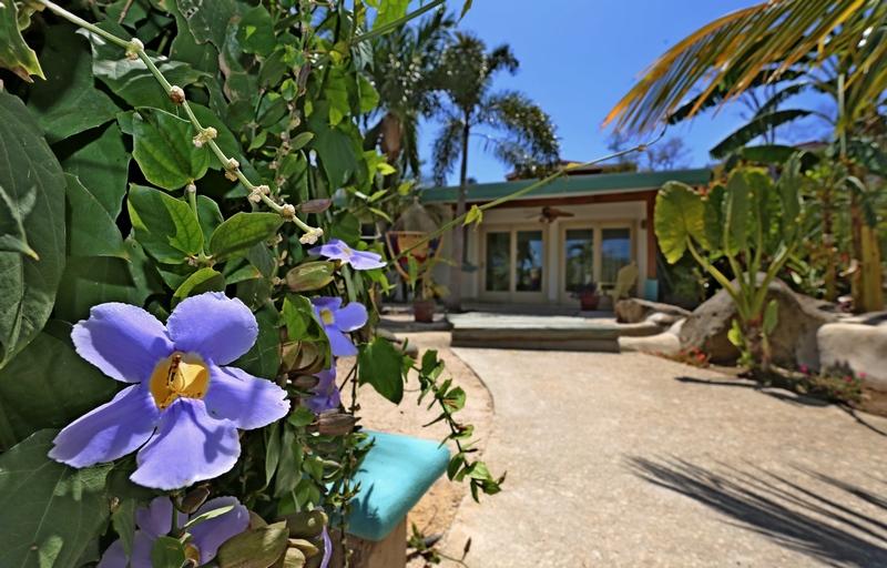 Casa Tropical 1