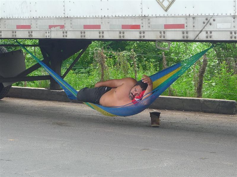 Pura Vida Truck Guy
