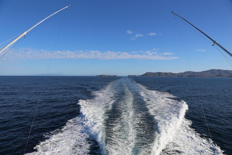 Sportfishing Danny 004