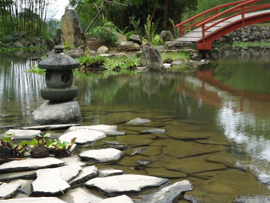 lankester_botanical_garden_by_uchijawarrior-d5kt6ln