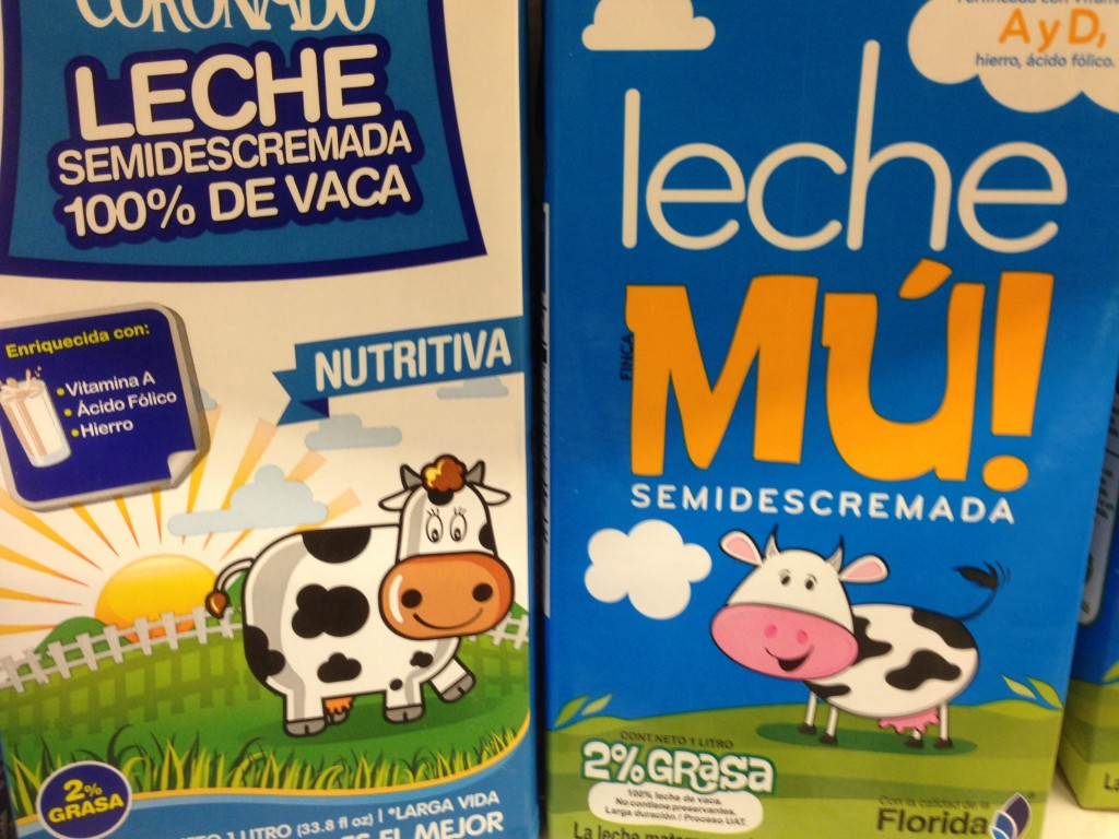 cows on milk carton in Costa Rica