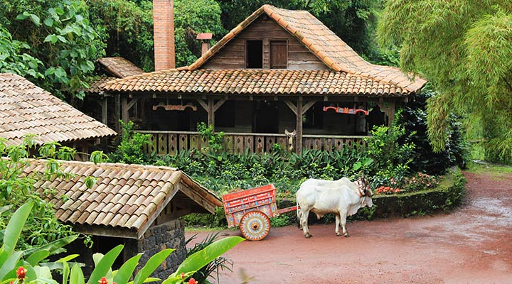 Costa Rica Typical Home